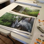 Byron Jorjorian Photography photographic printing operation