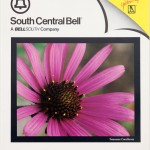 coneflower Telephone book cover Bell south